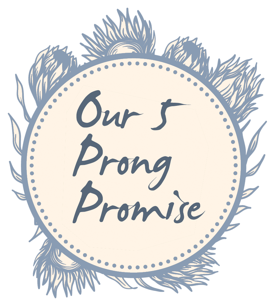 5 Prong Promise